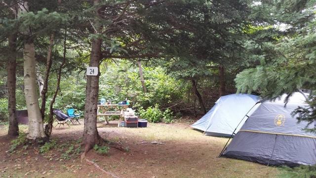 camping sauvage en tente camping du ruisseau rouge