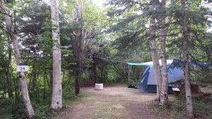 camping intime forêt charlevoix isle-aux-coudres tente